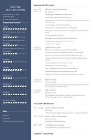 Fashion Stylist Resume Examples by Visual Merchandiser Resume Samples Visualcv Resume Samples Database