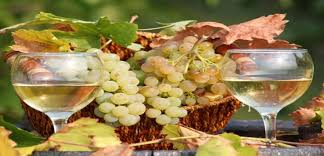 pinot gris pinot grigio archives the wine gospel