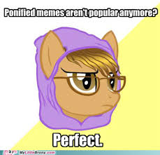 Know Your Meme Brony - image 205789 my little pony friendship is magic know your meme