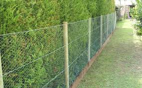 dog proof fence top backyard fence ideas