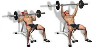 Barbell Bench Press Technique Incline Bench Press Technique Bodybuilding Pinterest