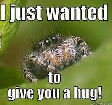Spider Meme Misunderstood Spider Meme - i just wanted to give you a hug misunderstood spider laugh