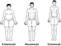 Somatotype & Nutrition