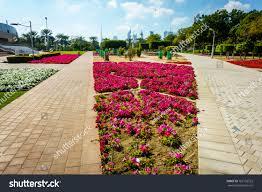 alleys flowe beds zabeel park dubai stock photo 762103522
