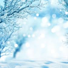 photography background 2017 10x10ft winter backdrop vinyl photography backdrops props