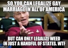 Legalize Weed Meme - picard wtf meme imgflip