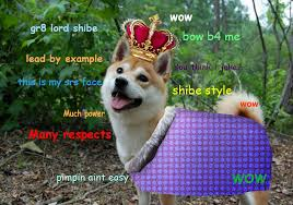 Shibe Doge Meme - doge lord has much power bow before shibe