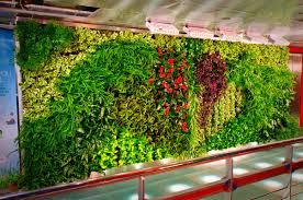 Garden Wall Systems by Modern Large Design Of The Green Garden Walls With Great Pattern