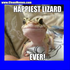 Best Memes Online - happiest lizard ever clean memes the best the most online