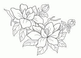 printable coloring pages for adults flowers free printable flowers coloring pages htm digital gallery free