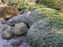 chambre d hote japon jardin japonais saupoudré photo de mois 11 12 chambres d hôtes
