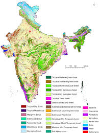 Physical Map Of India by Vegetation Type And Land Use Land Cover Map Of India Figure 7 Of 10
