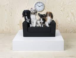 canapé klippan canapé klippan pour chien et ikea