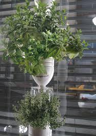 69 best hydroponic aquaponics images on pinterest hydroponic