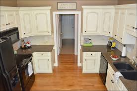 Painting Inside Kitchen Cabinets by Kitchen How To Paint Old Kitchen Cabinets Painting Oak Cabinets