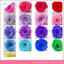blue roses for sale buy cheap china white blue roses products find china white blue