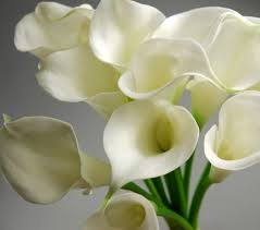 white calla bouquet touch 14