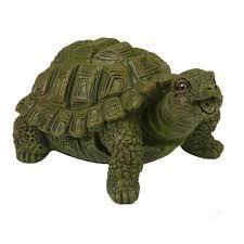Turtle Planter Finishing U2014 Aquanique