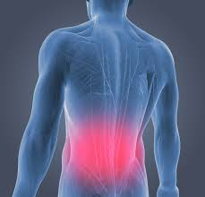 Back Pain When Getting Out Of Chair Lower Back Pain Causes U0026 Relief Dr Scholl U0027s