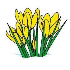 flower clip clipart pictures of flowers 20283 flowers clip
