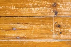 how to repair buckled hardwood flooring