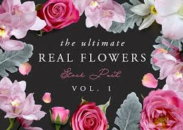 real flowers the ultimate real flowers pack vol 1 illustrations creative market