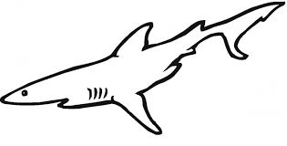 printable shark coloring pages coloring