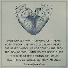 ever wonder why a drawing of a heart the minds journal