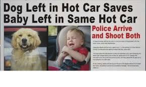 Dog In Car Meme - dog left in hot car saves baby left in same hot car police arrive