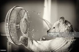 old fashioned electric fan old fashioned teddy bear in front of electric fan stock photo