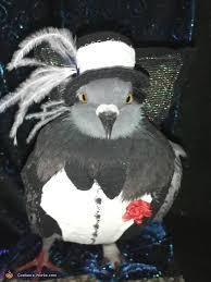 Parakeet Halloween Costume October 2015