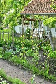 672 best beautiful vegetable gardens images on pinterest veggie