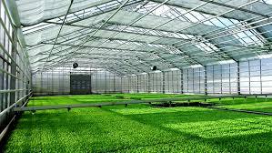 modern green house modern greenhouse stock footage video 6956938 shutterstock