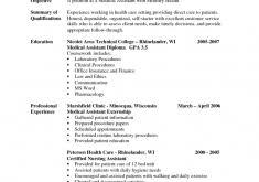 Undergraduate Resume Example by Download Undergraduate Resume Template Haadyaooverbayresort Com