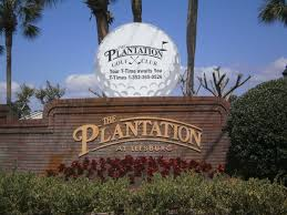 the plantation at leesburg central florida homes for sale