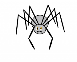 spiders clipart many interesting cliparts