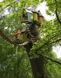 The Weasley Family Tree House  This is What I Tell People My House