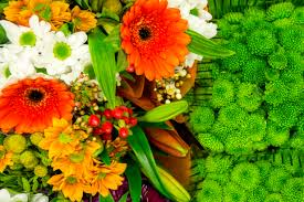 grossiste vaisselle paris le secteur horticulture et décoration du marché de rungis