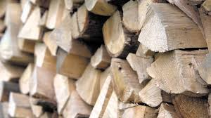 how to identify good firewood youtube