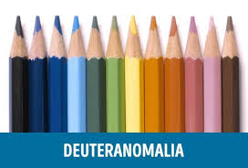 Color Blind What Do They See This Is How People With Different Types Of Color Blindness