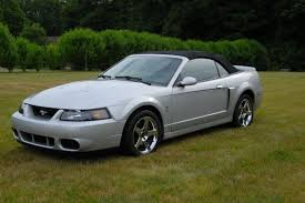 mustang cobras for sale mustang cobra for sale search ford mustang cobras for sale on