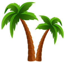 two palm trees png clipart image summer clip