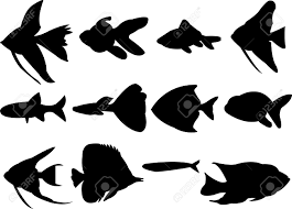 974 shoal of fish stock illustrations cliparts and royalty free