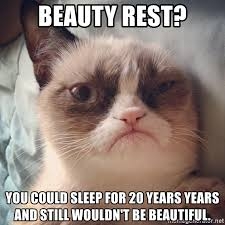 Grumpy Cat Sleep Meme - beauty rest you could sleep for 20 years years and still wouldn t