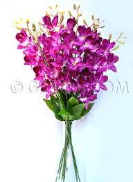 artificial flower buy artificial purple orchids online in india 199 ginni bloom