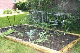 small backyard veggie garden free vegetable plans quick and simple