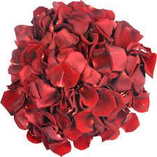 real petals fresh petals real petals petals free