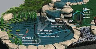 le uv pour etang l entretien du bassin de jardin mois par mois dossier