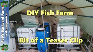 diy fish farm for the back yard bit of a teaser clip youtube