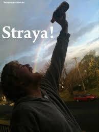Straya Memes - straya meme funny memes